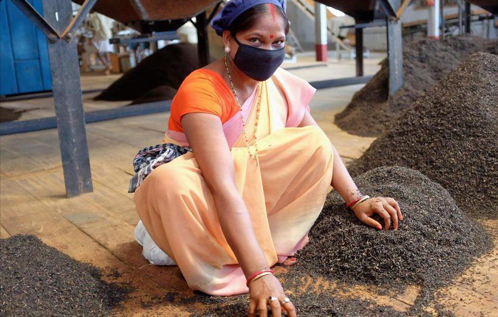 Theefabriek Assam met vrouw