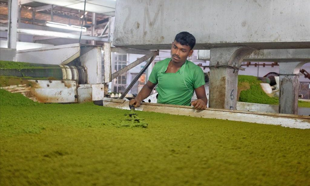 Theefabriek Assam2