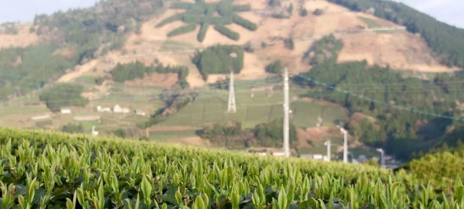 3.Chagusaba