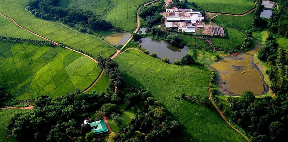 Sky view Satemwa