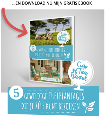 Download nu mijn gratis ebook